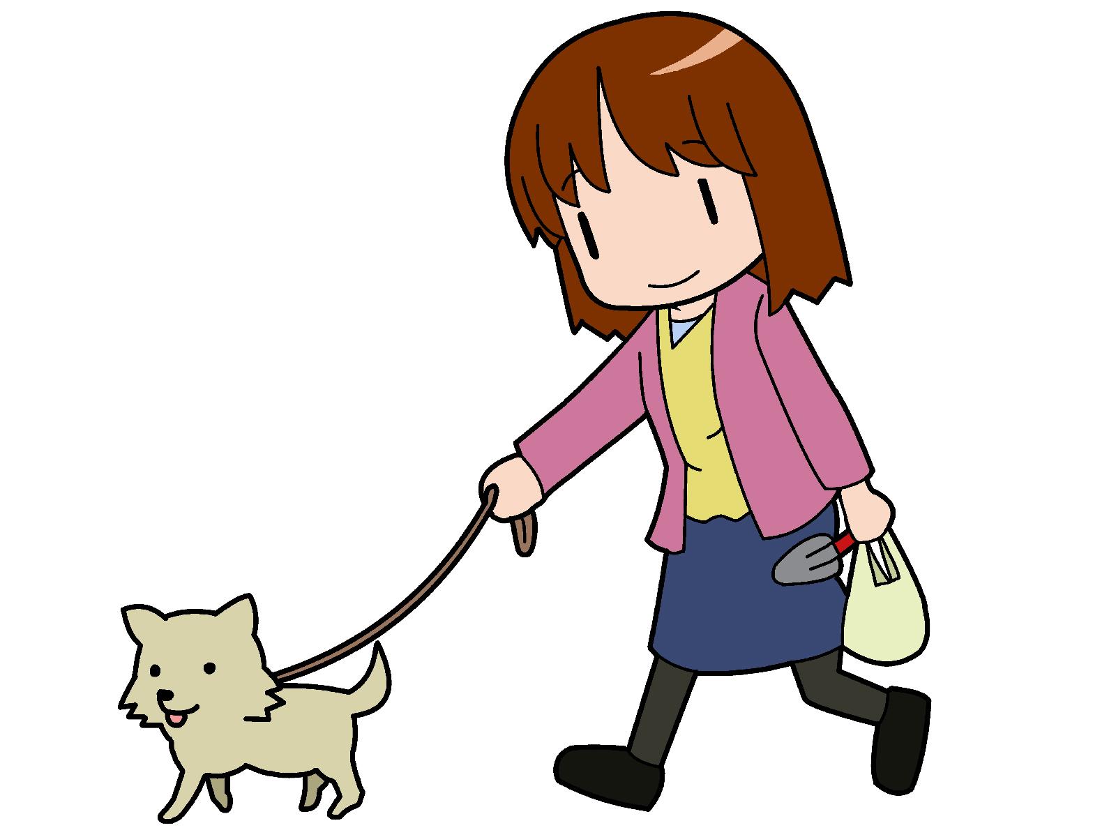 チワワとお散歩