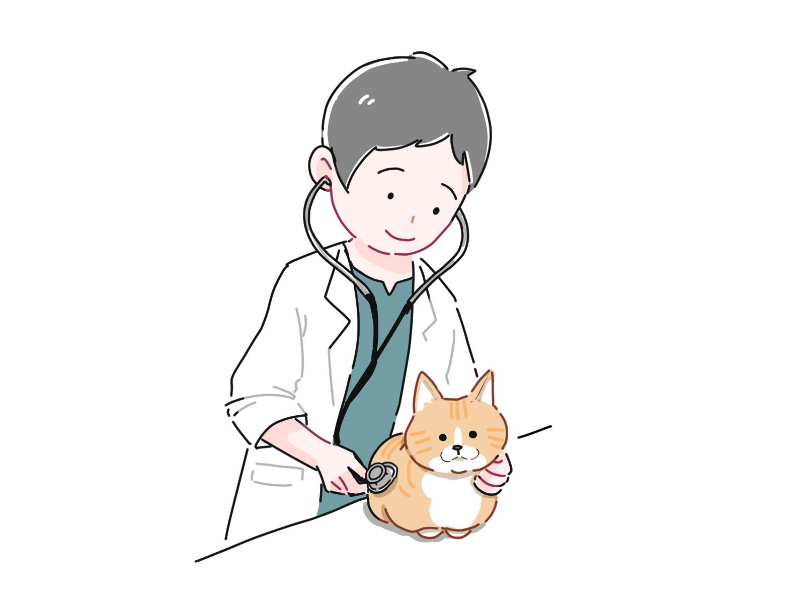 獣医さんと猫