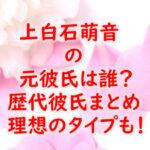 kamishiraishimone