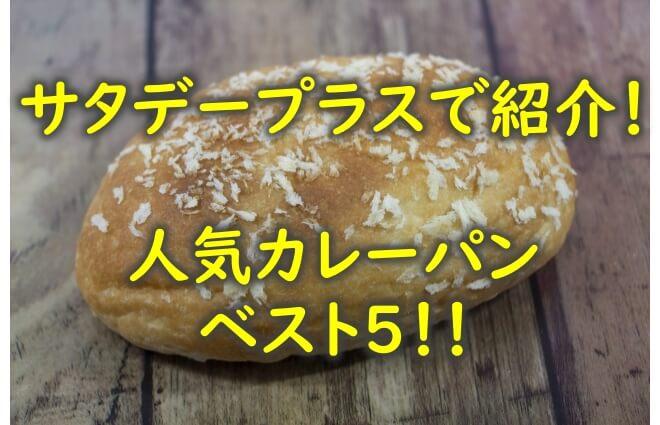 Satapura curry bread