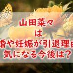 nanayamada-retired