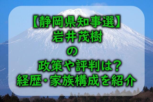 静岡県から見た富士山の写真